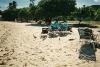 Sharing Sapphire Beach