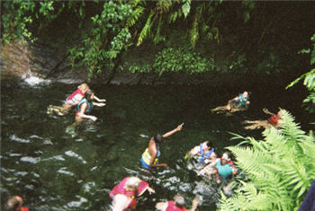 Going in TiTou Gorge Dominica
