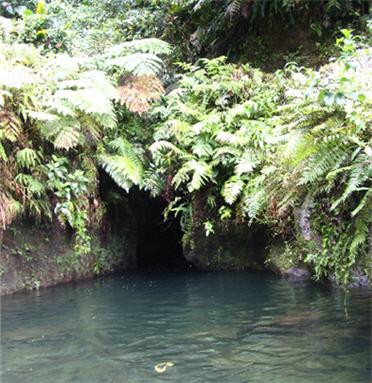 TiTou Gorge in Dominica